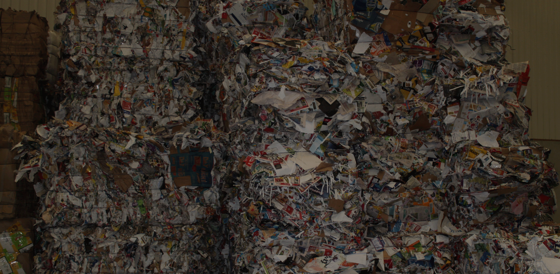New Zealand Pulp and Paper